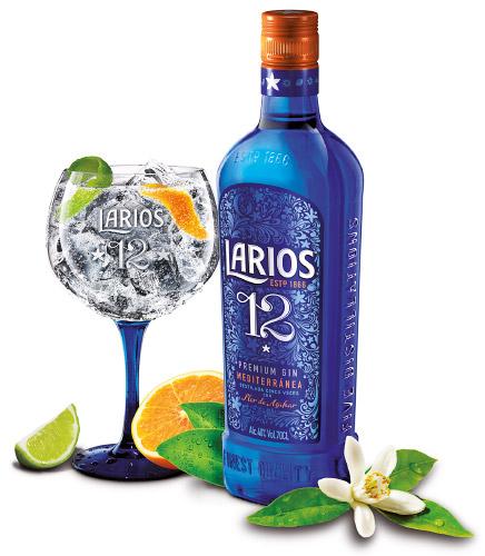 NP_Larios-12-Pilares-2